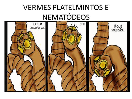 Curso Online de VERMES PLATELMINTOS E NEMATÓDEOS