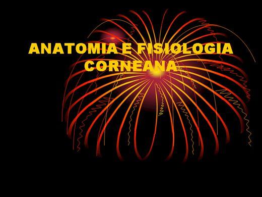 Curso Online de ANATOMIA E FISIOLOGIA CORNEANA