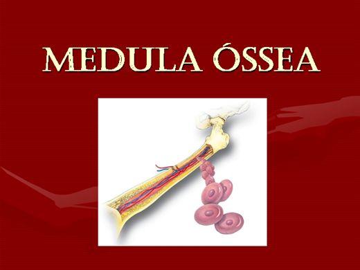 Curso Online de MEDULA ÓSSEA