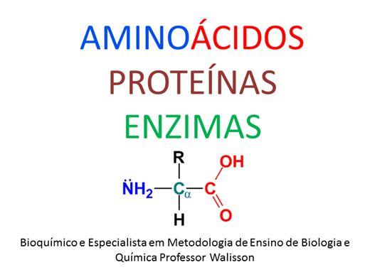 Curso Online de Aminoácidos, Proteínas e Enzimas