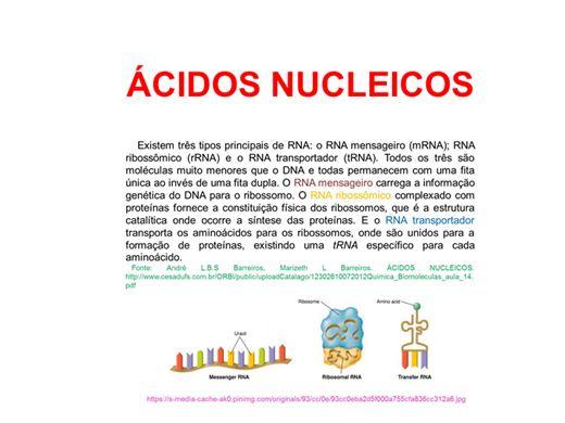 Curso Online de Ácidos Nucleicos