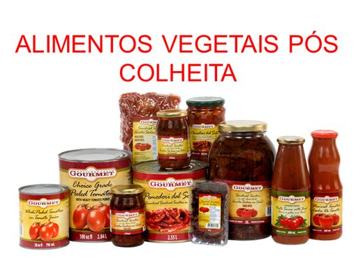 Curso Online de Alimentos Vegetais Pós-Colheita