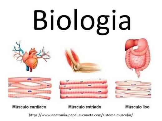 Curso Online de Biologia