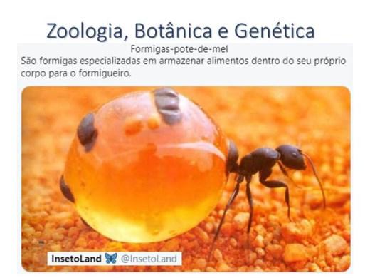 Curso Online de Zoologia, Botânica e Genética