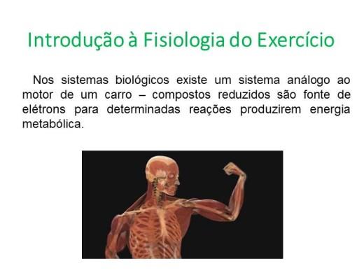 Curso Online de Introdução à Fisiologia do Exercício