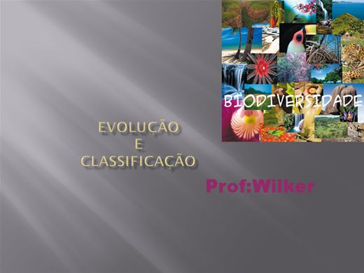 Curso Online de EVOLUÇÃO  E  CLASSIFICAÇÃO